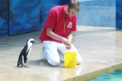 Hannover Zoo 2006