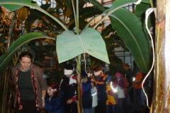 Tropeninstitut 2006
