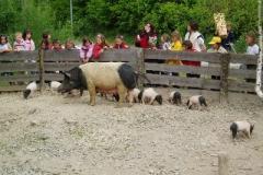 Hessenpark 2007