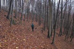 Wandern im Soeder Wald 2010