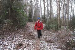 Wanderung zum Riesenstein 2010