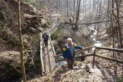 Habichtswaldwanderung
