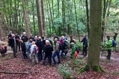 Natura Trail/2. Wanderung