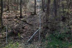 Einzäunung unseres Hanges für Naturfreunde Bergziegen