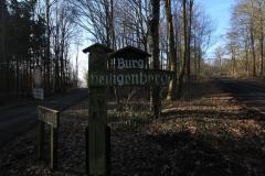 Burg-Heiligenberg