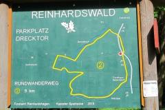 Mountainbiking: Donnebachtal-Reinhardswald