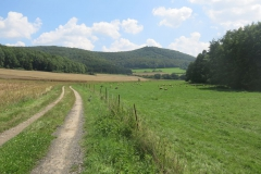 Mountainbiking: Zierenberg-Warmetal-Habichtswald