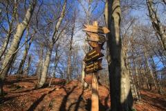 Wandern im Eichsfeld: Asbach