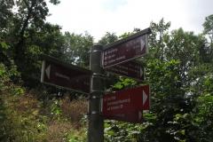Wandern auf dem Habichtswaldsteig