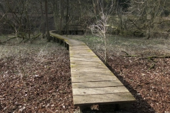 Wandern im Kellerwald: Odershausen