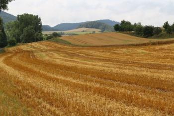 Wandern im Kellerwald: Wesetal