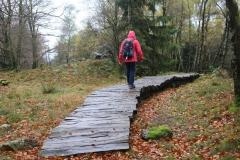 Wandern im Kellerwald: Wüstgarten