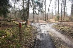 Wandern auf dem Kellerwaldsteig