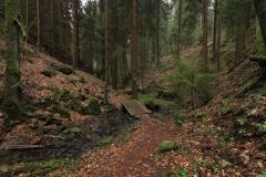 Wandern im Knüllwald: Lochbachklamm