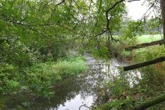 Wandern im Reinhardswald: Holzhapetal