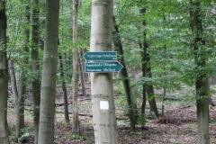 Wandern im Thüringer-Wald: Elfengrotte