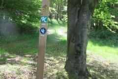 Wandern am Edersee: Hagensteinroute