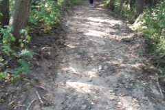 Planierarbeiten an dem Fußweg zum Naturfreundehaus